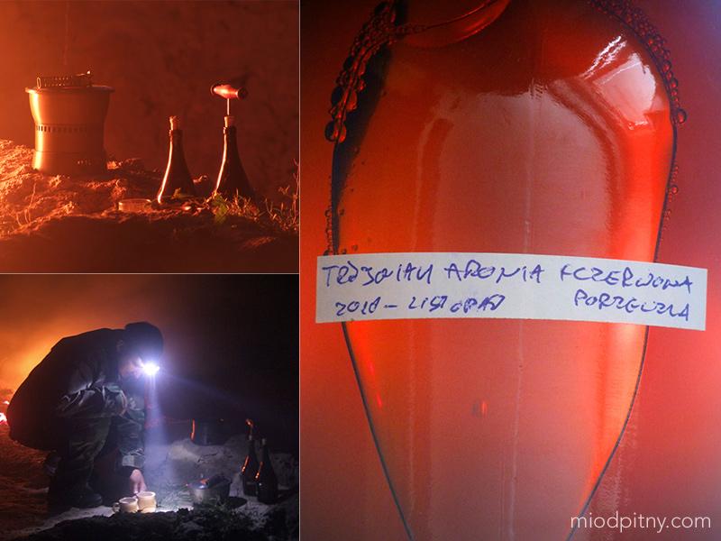 Trójniak Aronia + czerwona porzeczka, listopad 2010