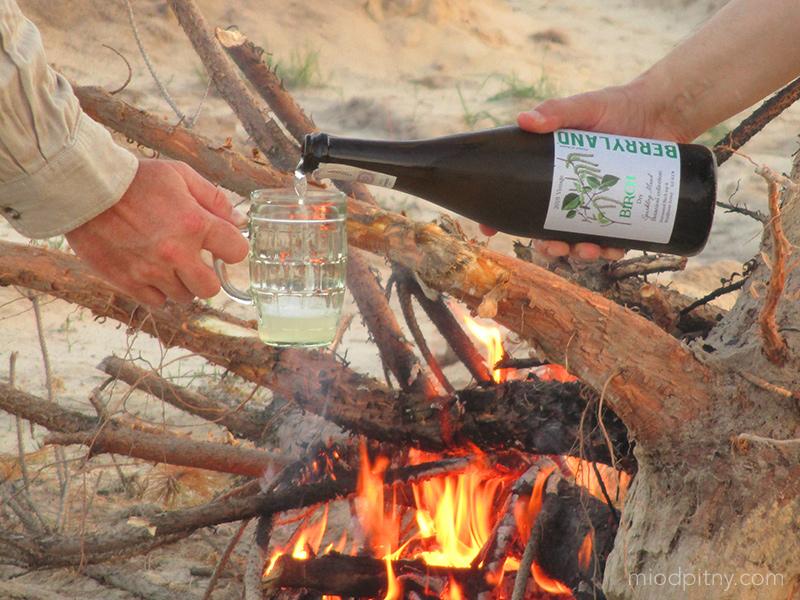 Birch Sap Sparkling Mead 2019 Vintage - miód pitny brzozowy musujący